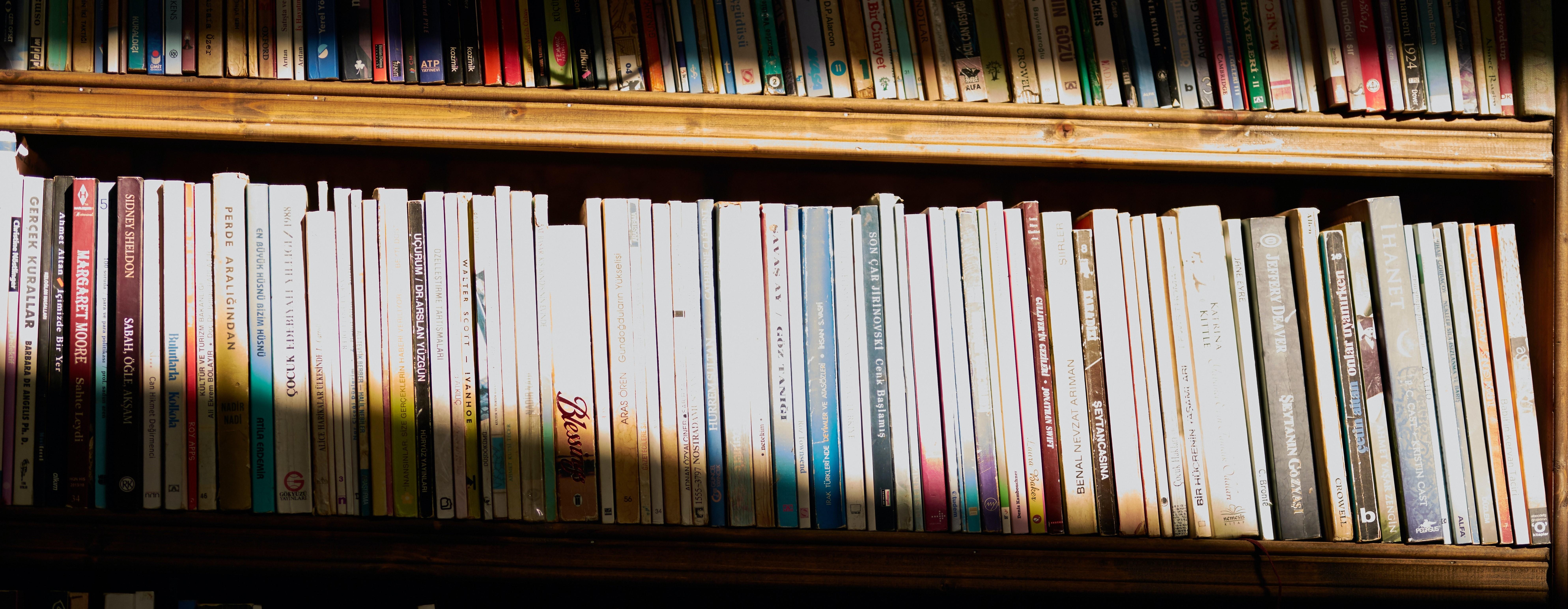 Reihe eines Buchregals mit, hervorgehoben durch Lichteinfall.