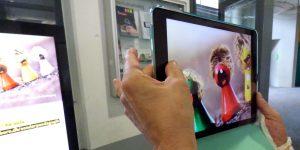 Das Bild zeigt Hände, die ein Tablet auf einen Bildschirm im Uni-Foyer halten. Auf Bildschirm und Tablet ist die Startseite des Blogs Sonderpaedagogik zu sehen.